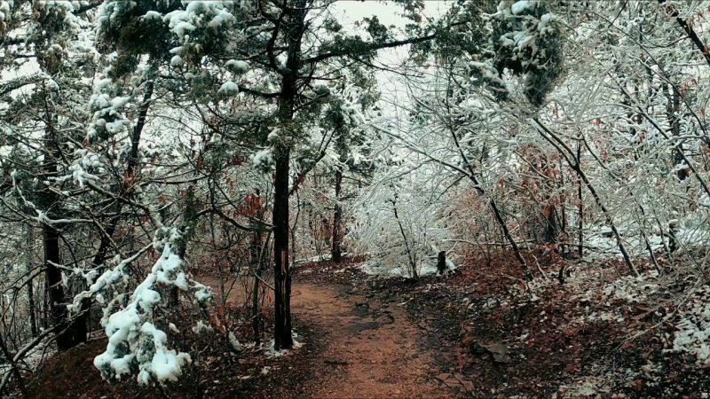 Rising Pathways – Ozarks [Video]
