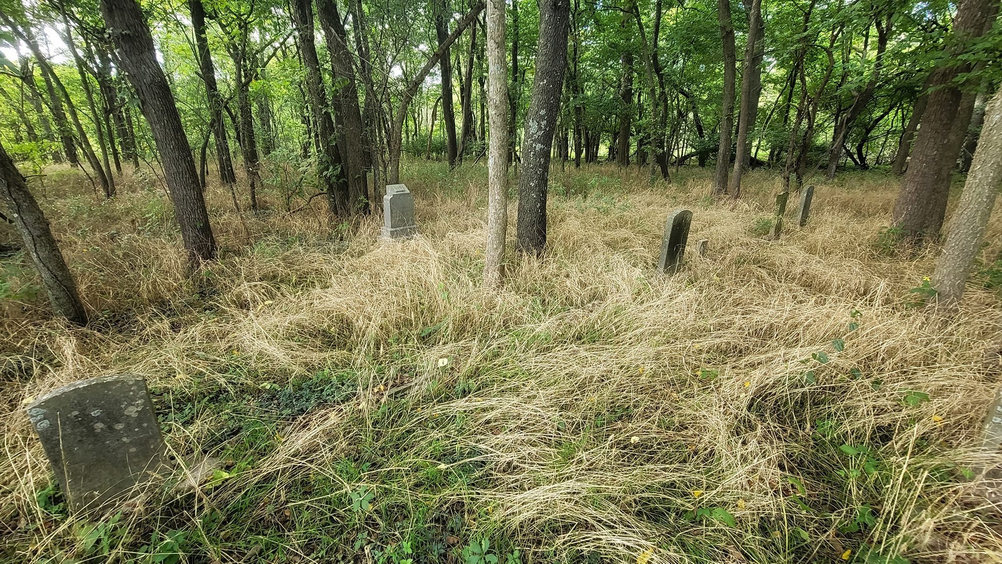 Unknown Cemetery – Lawrence County, Missouri   Only a small section was mowed an…