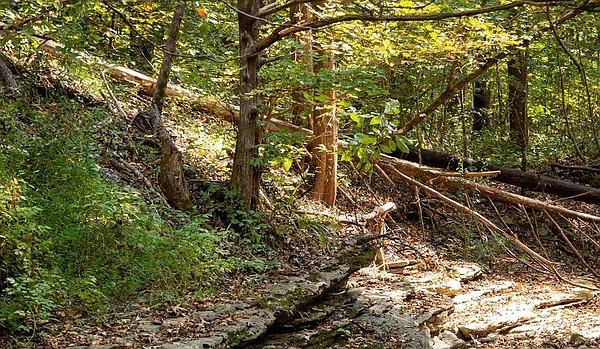 Hiker, 16, falls to death at Buffalo National River, park service says