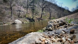 Roaring River State Park - Near Cassville, MO