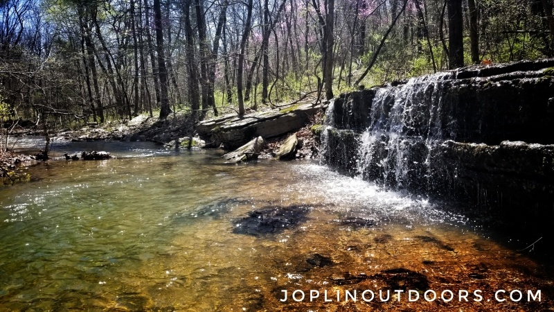 Chinquapin Trail April 2019 [ Gallery ]