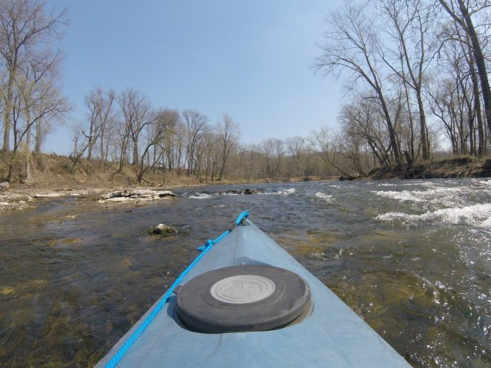 The Art of Paddling Upstream