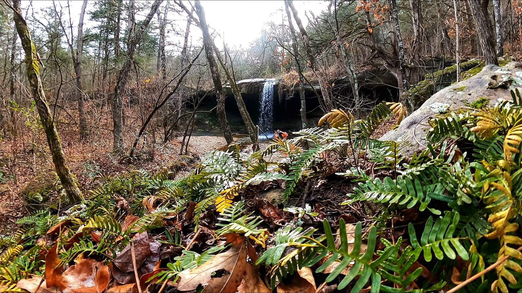 First of the year Waterfall Hike [ January 1st, 2021]