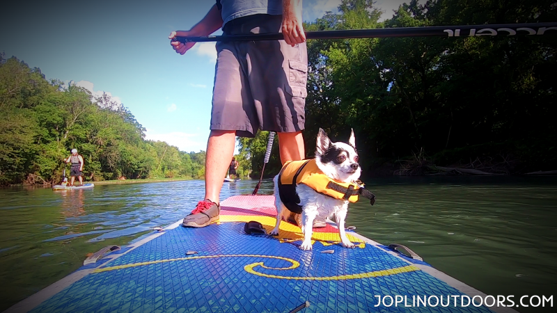 SUP-ing With My Pup Shoal Creek July 12th, 2019 [ HD Video ]