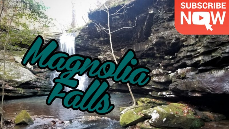 Magnolia Falls [ HD Video ]