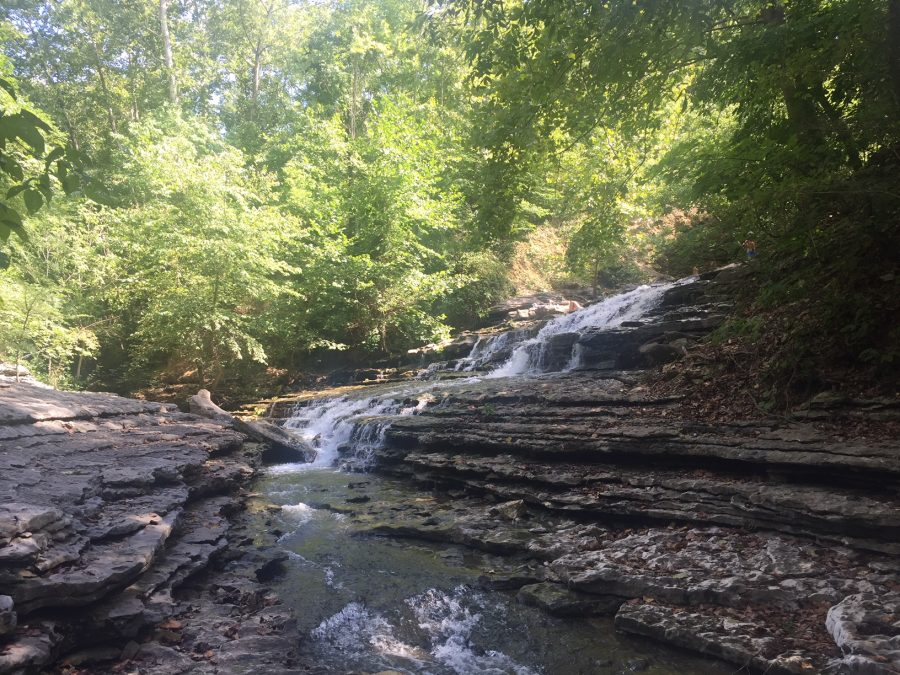 Tanyard Creek Nature Trail